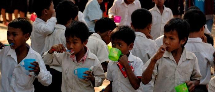 Proyectos Sanidad Sauce ONG